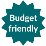 Budget friendly metal detector